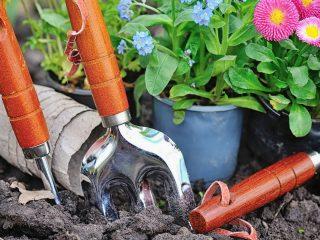 best heavy duty garden fork