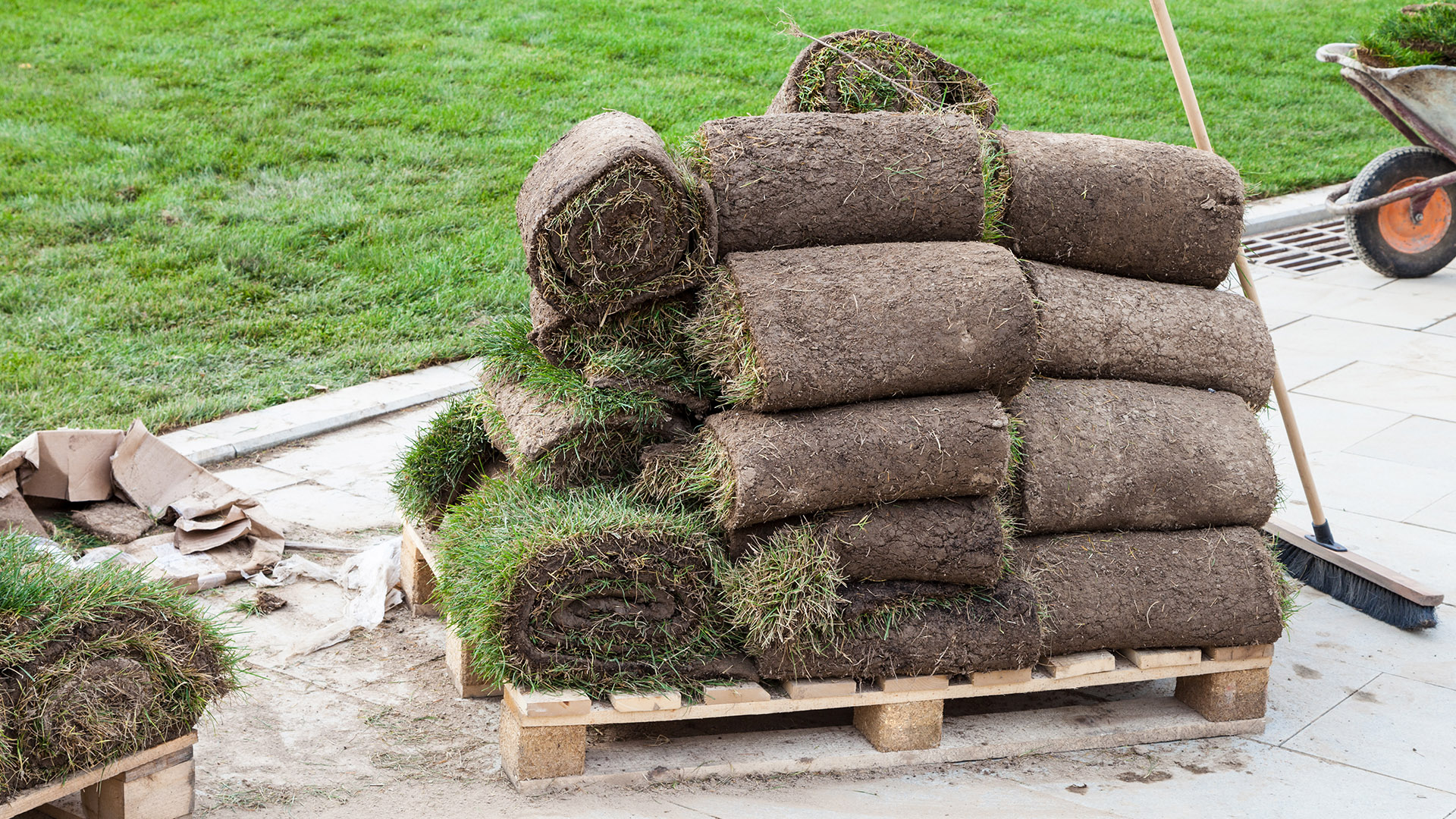 best time to lay turf