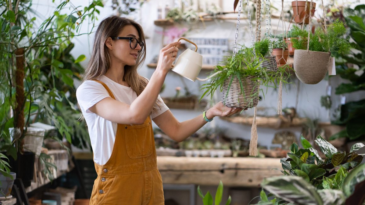 pros and cons of self watering containers