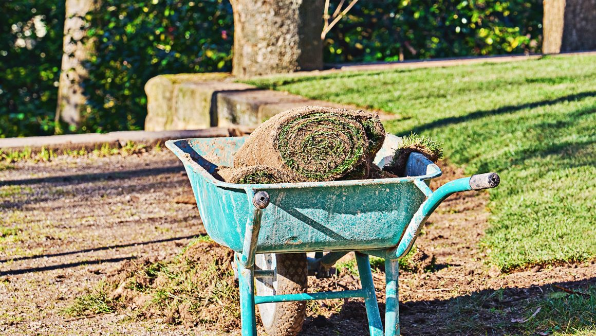 when can you lay new turf